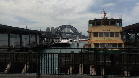 Vue sur Harbour Bridge, depuis le quai avec un bateau à touriste juste devant