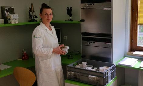 Im Labor der Imkerschule: Alenka Slatinek studierte Lebensmitteltechnologie in Ljubliana