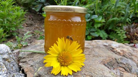 Am Honigfest 2021 sollen dann die besten Honige von heuer verkostet werden können