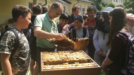 Über 100 Kärntner Bienenzuchtvereine begeistern Jung und Alt