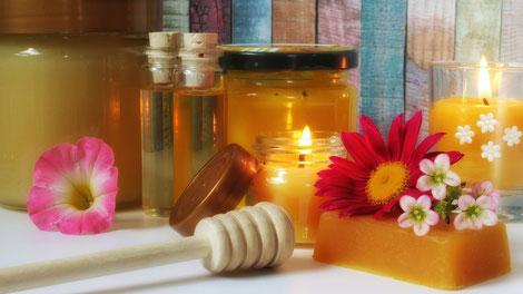 Apitherapie-Kurs: Module Honig 1 und 2, Wachs, Pollen und Perga sowie Propolis