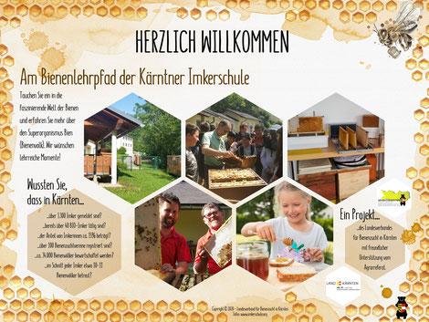 Der Bienenlehrpfad beinhaltet eine Eingangstafel mit eigenen Fotos und Texten