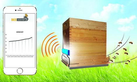BeeSaver soll den Imkern die Bienenhaltung durch Vorhersagen erleichtern