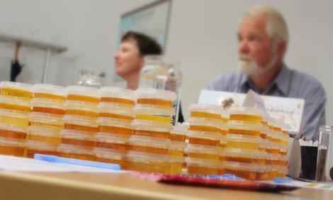 Aufgrund des besonderen Honigjahres sind heuer Honige mit anderer Zusammensetzung als sonst geerntet worden