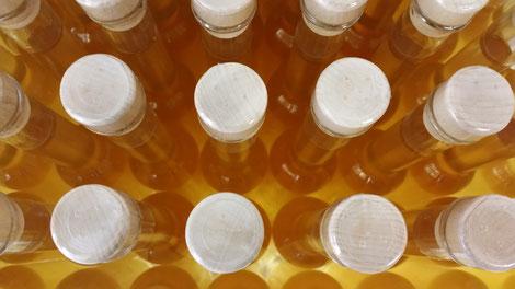 Kursprogramm der Kärntner Imkerschule: Vom Honig zum Essig