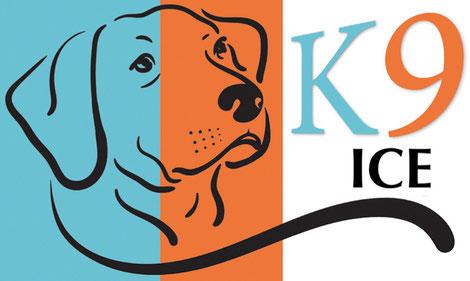K9 Ice Mix natuurlijk hondenijs