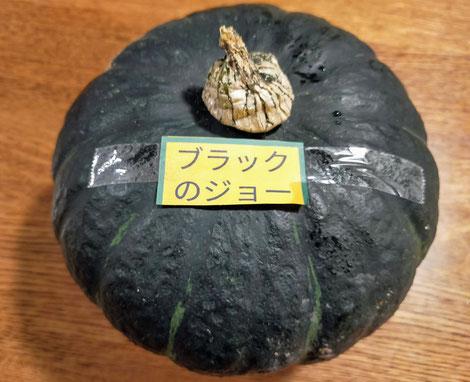 大きな黒緑のかぼちゃ
