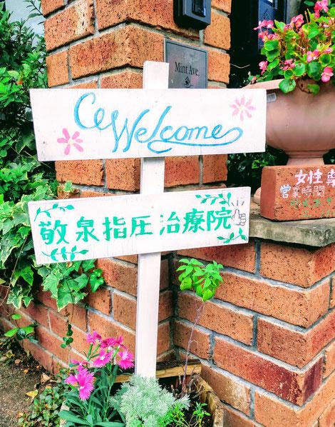 敬泉指圧治療院の看板とカワラナデシコの花