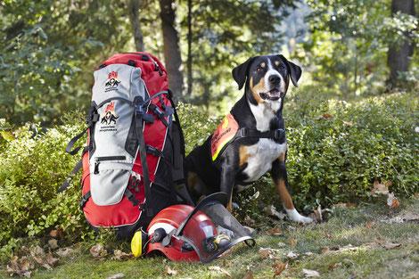 © Bundesverband Rettungshunde e.V.