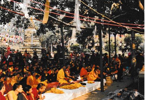 Pilgrims sitting under ther Bodhi Tree in Bodh Gaya (India) 2001