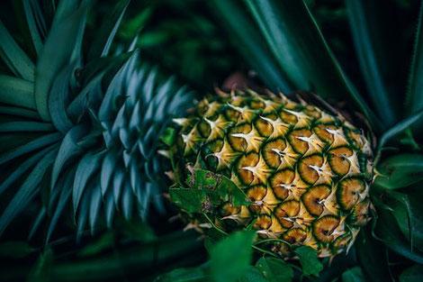 Ananas mit Blättern