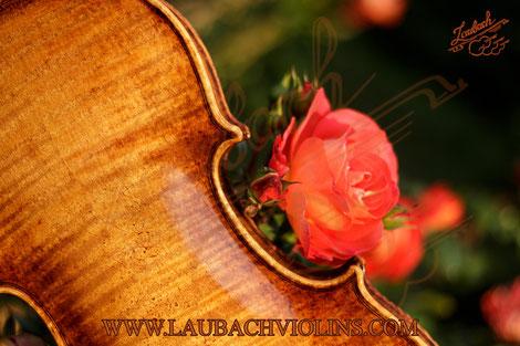 Meistervioline Grundierung und der Geigenlack