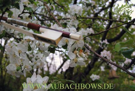 Laubach master violin bow