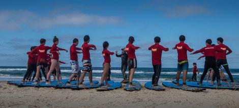 alles muss man erst lernen - auch das Surfen!