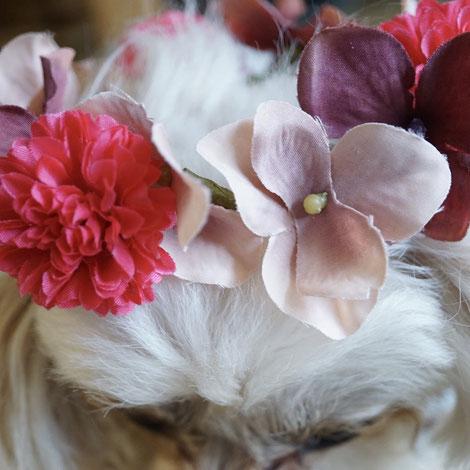 花屋 ワークショップ 看板犬