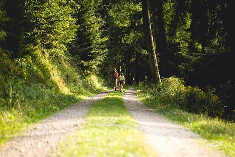 Feldweg, Spazieren gehen, Spaziergang, Wald, Auszeit, Pause, Wahrnehmung, Kreativität, Konflike