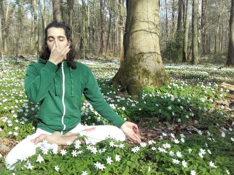 Pranayama und Meditation im Wald