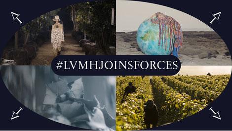#LVMHJoinsForces LVMH Économie circulaire RSE Dimitri Carbonnelle Livosphere