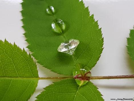 Grüne Diamanten - green diamonds
