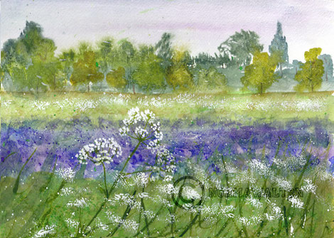 Watercolours inspired by Devon spring hedgerows, bluebells