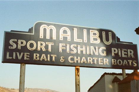 Apfelstrudel Shot Malibu