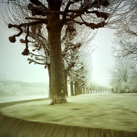Kunstfotografie, Treppen, Wald und Fantasie