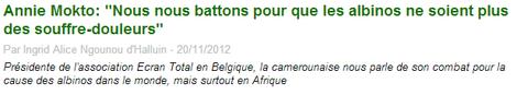 journal du cameroun le 20/11/2012