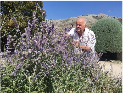 """Christian Colotte, kreativer Kopf und """"Alchimist"""" von SALIN de BIOSEL, prüft die Qualität der Pflanze."""