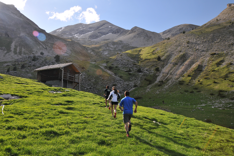 Trail Blanc du Dévoluy 2015