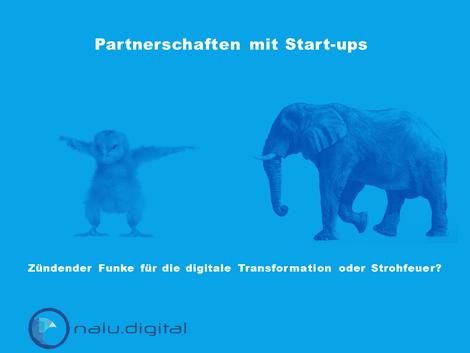 Link - Partnerschaften mit Startups
