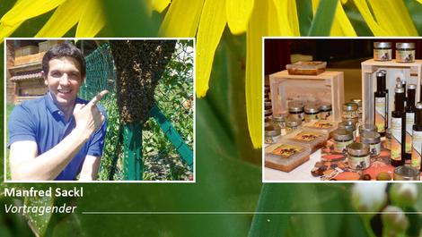 Workshop im Bildungshaus Schloss Krastowitz: Gesunde Bienenprodukte