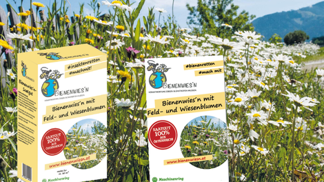"""Das hochwertige Saatgut """"Bienenwiesn"""" gibt es auch exklusiv an der Kärntner Imkerschule"""