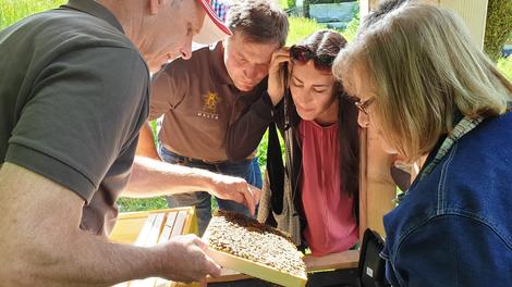 Faszination Bienenhaltung - Kärntner Jungimker sind in guten Händen!