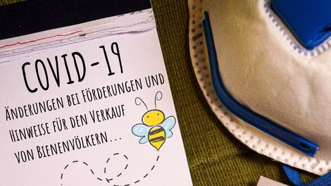 COVID-19: Änderungen bei Förderungen und Hinweise für den Verkauf von Bienenvölkern