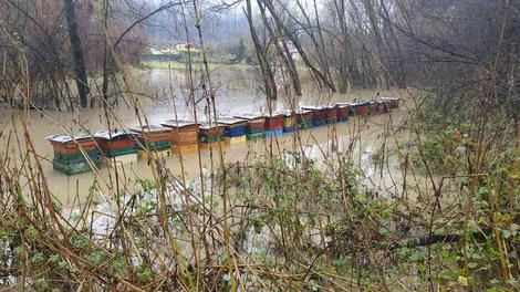 Die Unwetter machten auch vor den Bienen nicht Halt. Tipps zur Schadensaufnahme.