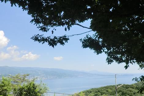 大島茶屋からの眺め