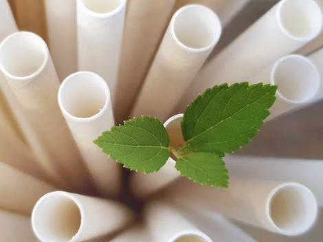 Paper drinking straws