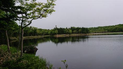 知床五湖自然遊歩道 三湖