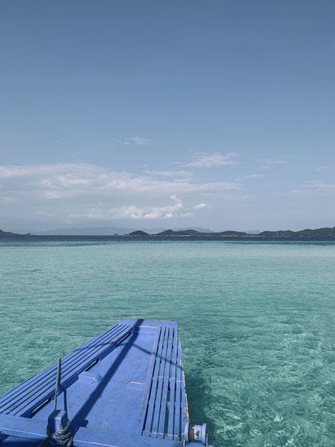 Wasser so klar, Fische so bunt: Philippinen