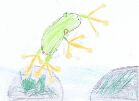 Blog-Frosch-hüpfender Frosch