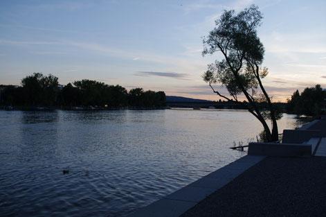 See-Rhein in Konstanz am Bodensee - Juni 2012