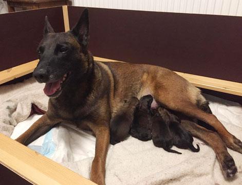 Das erste Bild der kleinen Familie :-)