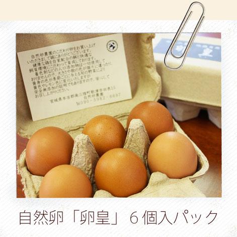 自然卵6個入パック
