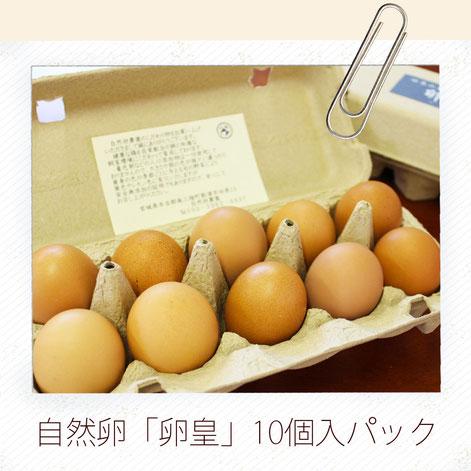 自然卵10個入パック