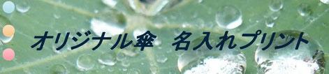 名入れ傘ホームページ(別サイト)