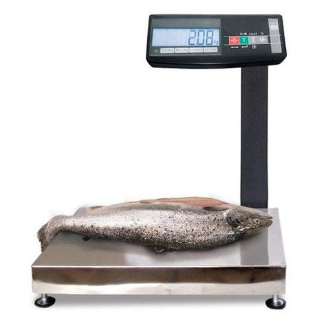 Весы общего назначения МАССА МК-АВ11