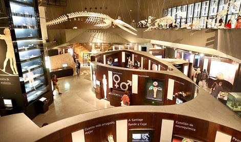 Museum im parque de las ciencias
