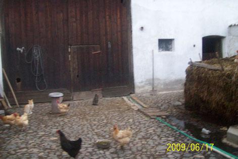 """Bauernhof in Siebenbürgen mit klassischem Misthaufen und freilaufenden Hühnern (siehe dazu auch mein Buch """"Die Landler in Rumänien"""", auf dieses gehe ich in einem späteren Kapitel ein)."""