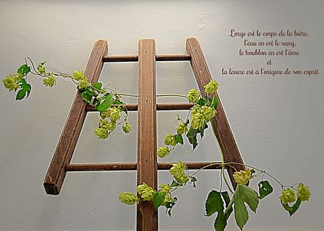 Fourquet instrument de brasserie artisanale, La mousse du Guiers