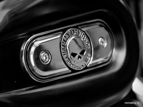 Skull 1280x960